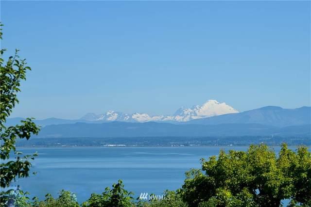 0 Cascade View Drive, Camano Island, WA 98282 (#1765003) :: The Kendra Todd Group at Keller Williams