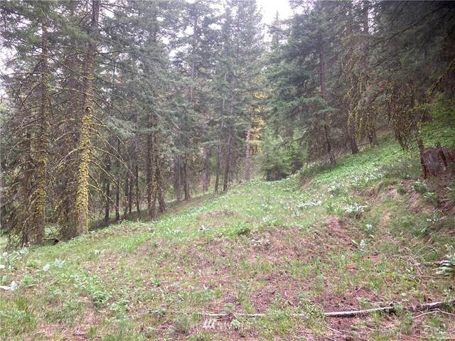 1 Nahahum Canyon, Cashmere, WA 98815 (#1765630) :: Provost Team | Coldwell Banker Walla Walla