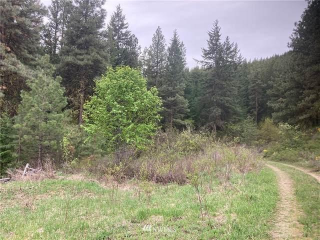 2 Nahahum Canyon, Cashmere, WA 98815 (#1765631) :: Provost Team | Coldwell Banker Walla Walla