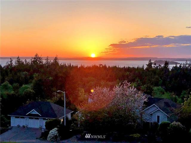 17 Malvern Hills Drive, Camano Island, WA 98282 (#1765771) :: Better Homes and Gardens Real Estate McKenzie Group