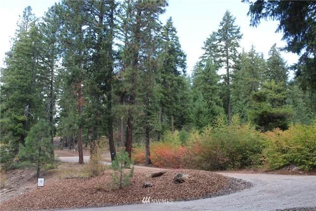 11 Salmon La Sac Road, Ronald, WA 98940 (MLS #1768789) :: Nick McLean Real Estate Group