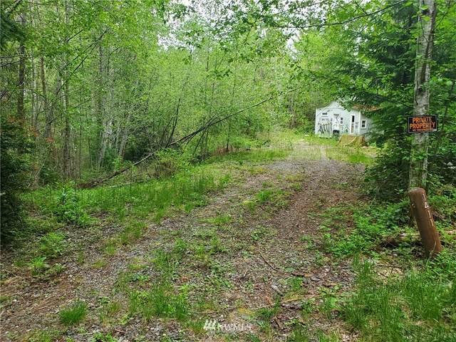 1411 NE Collins Lake Drive, Tahuya, WA 98588 (#1770019) :: Keller Williams Western Realty