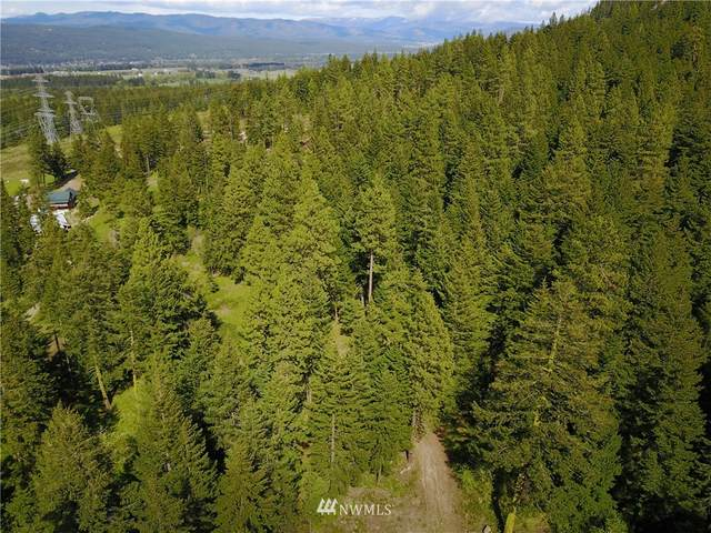 170 Noble Place, Cle Elum, WA 98922 (#1770880) :: TRI STAR Team | RE/MAX NW
