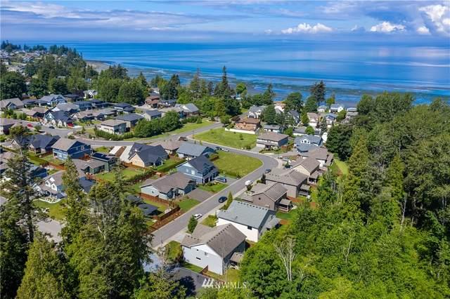 5350 Coastal Loop, Blaine, WA 98230 (#1779802) :: Simmi Real Estate