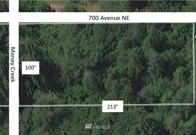 69908 NE Money Creek Road, Skykomish, WA 98288 (#1790445) :: Priority One Realty Inc.