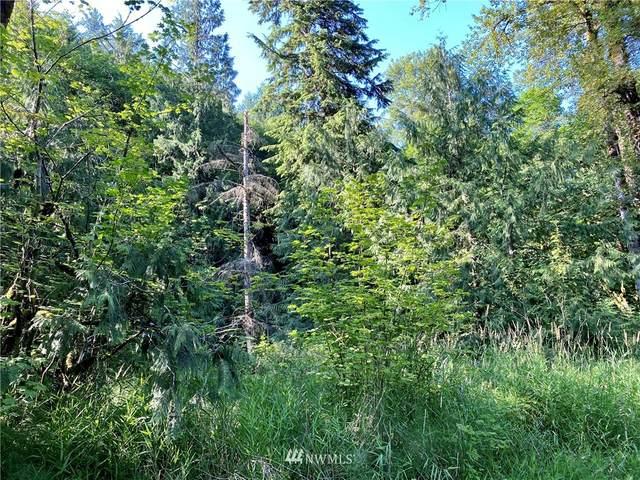 0 Preston Fall City Road SE, Fall City, WA 98024 (#1799709) :: Better Properties Real Estate