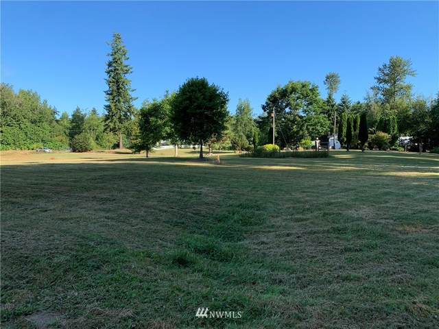 25231 4th Avenue NW, Stanwood, WA 98292 (#1802991) :: Icon Real Estate Group