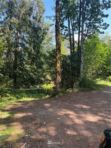 504 Mt Index Drive, Gold Bar, WA 98251 (#1804504) :: Shook Home Group