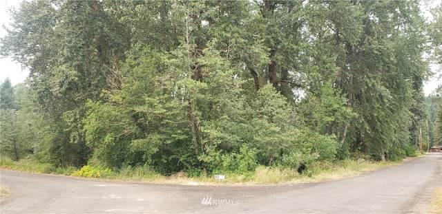91 Black Bear Drive, Cle Elum, WA 98922 (#1817316) :: Provost Team | Coldwell Banker Walla Walla
