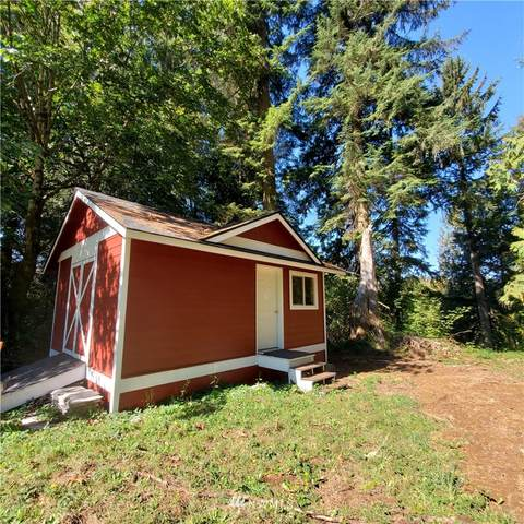 3 Lot Spruce Place, Cathlamet, WA 98612 (#1818210) :: Icon Real Estate Group