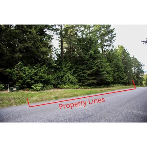 47 Petrich Road, Friday Harbor, WA 98250 (#1820240) :: Pacific Partners @ Greene Realty