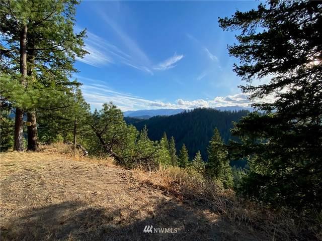 0 Chumstick Highway, Leavenworth, WA 98826 (#1828437) :: Pacific Partners @ Greene Realty