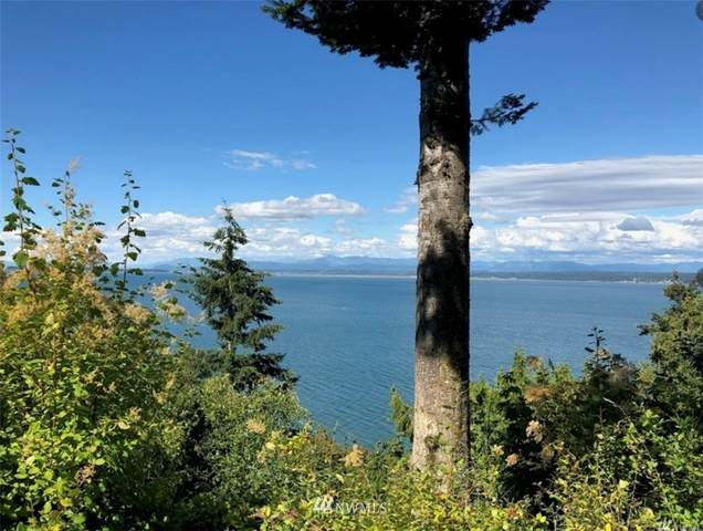 0 Cascade View Dr, Camano Island, WA 98282 (#1832373) :: Franklin Home Team