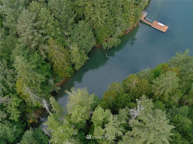 191 Borgeson Rd, Quilcene, WA 98376 (#1832557) :: Alchemy Real Estate