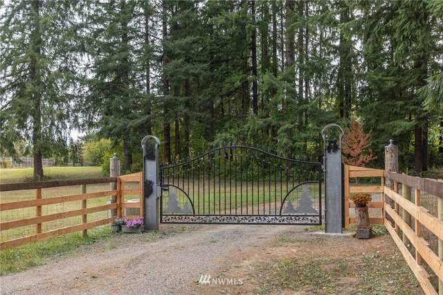 28 Downey Lane, Oakville, WA 98568 (#1835453) :: Keller Williams Western Realty