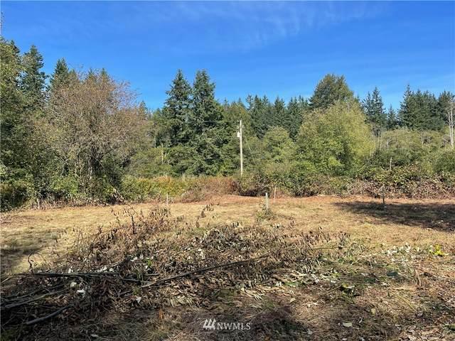 4255 West Road, Blaine, WA 98230 (#1837127) :: Ben Kinney Real Estate Team