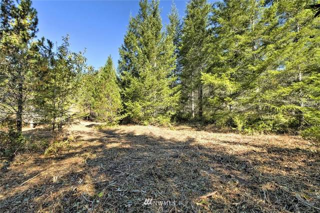 0 TR1 E Enchantment Heights Drive, Union, WA 98592 (#1837381) :: Icon Real Estate Group
