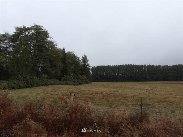 99 Wynooche Tracts Road, Montesano, WA 98563 (#1837604) :: The Snow Group