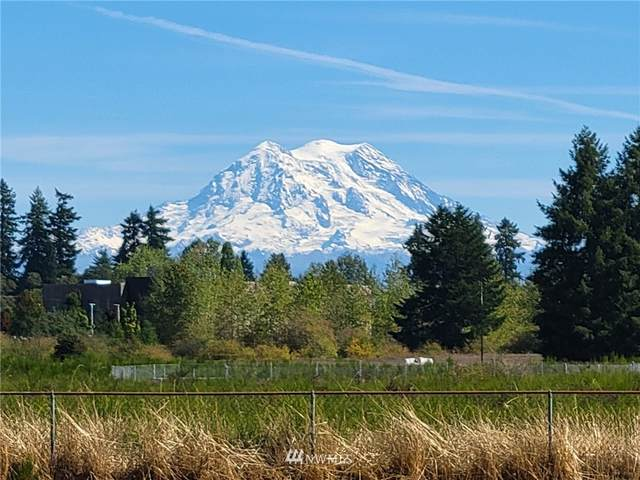 14636 Berry Valley Road SE, Yelm, WA 98597 (#1842069) :: Better Properties Lacey