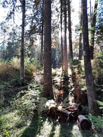 63402 West Cascade Way, Marblemount, WA 98267 (#1844481) :: Provost Team   Coldwell Banker Walla Walla