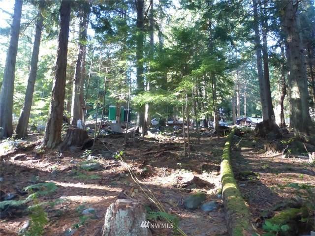 100 Lodgepole Lane, Lopez Island, WA 98261 (#1845194) :: Keller Williams Western Realty