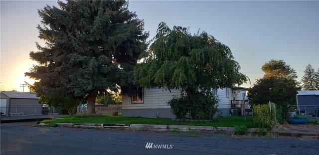 168 Adrian Avenue NW, Soap Lake, WA 98851 (#1848134) :: Lucas Pinto Real Estate Group