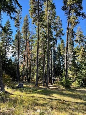730 Tall Pines Drive, Cle Elum, WA 98922 (#1856074) :: Keller Williams Western Realty