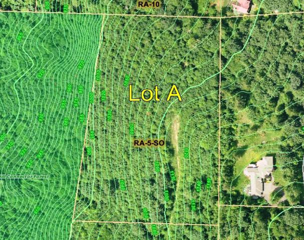 29799 SE 51st St SE Lot A, Issaquah, WA 98024 (#218320) :: McAuley Real Estate