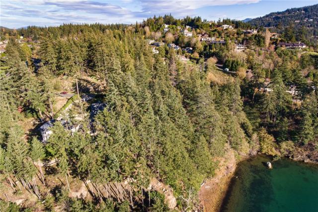 830 Briar, Bellingham, WA 98225 (#352464) :: Ben Kinney Real Estate Team