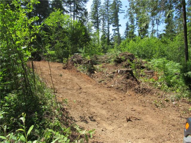 2-lots NE Tahuya Blacksmith Rd, Tahuya, WA 98588 (#487679) :: Homes on the Sound
