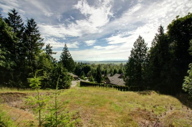 17577 Skyridge Dr, Mount Vernon, WA 98274 (#743621) :: Ben Kinney Real Estate Team