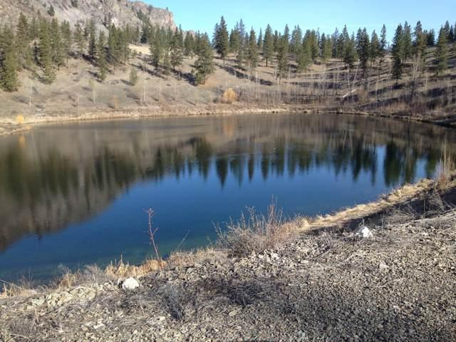2 Mist Lake Road, Tonasket, WA 98855 (#750405) :: Mike & Sandi Nelson Real Estate