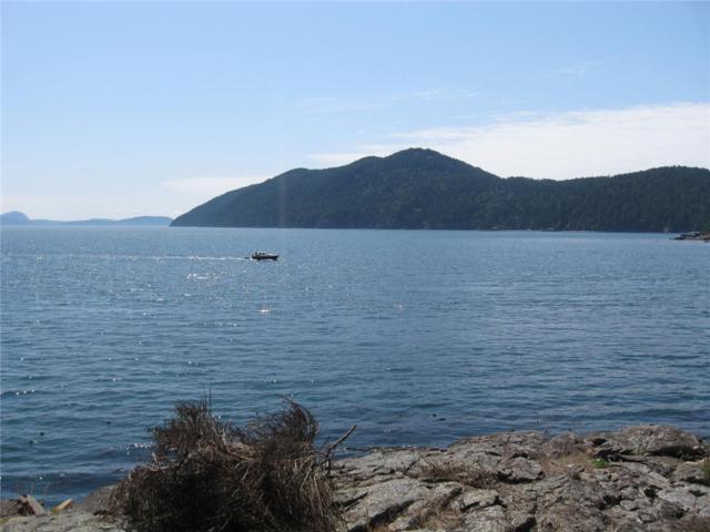879 Deer Point Rd, Orcas Island, WA 98279 (#841090) :: Ben Kinney Real Estate Team