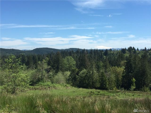 0 Seminary Hill, Centralia, WA 98531 (#878804) :: Homes on the Sound