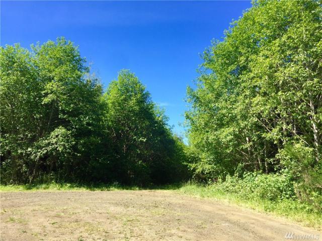 97 Dempsey Creek Lane, Ocosta, WA 98595 (#924412) :: Ben Kinney Real Estate Team