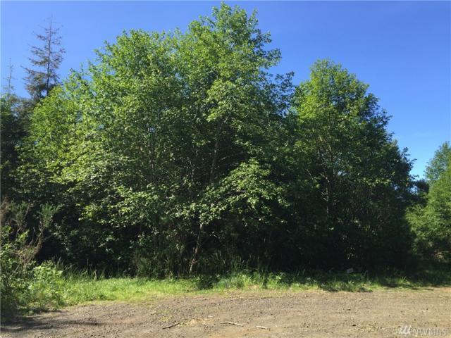 89 Dempsey Creek Lane, Ocosta, WA 98595 (#924423) :: Ben Kinney Real Estate Team