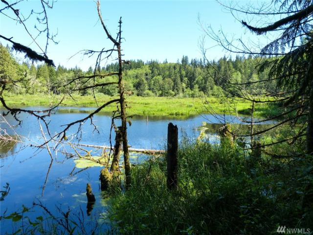 2582 Snow Creek Rd, Quilcene, WA 98376 (#967148) :: Tribeca NW Real Estate