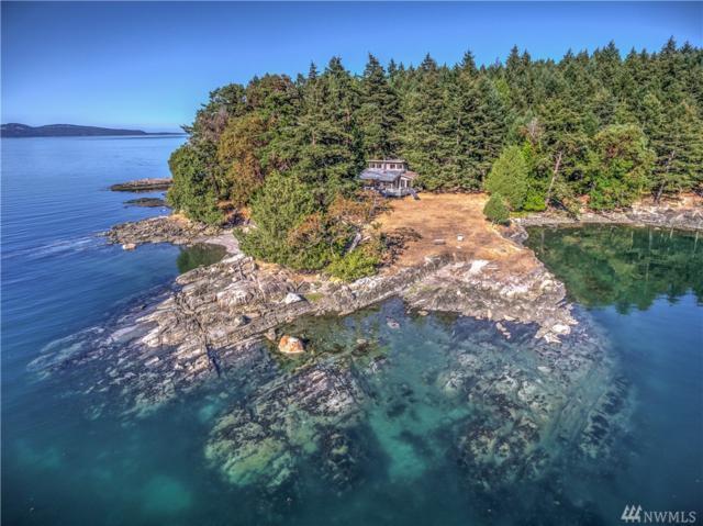 221 Marine Lane, Stuart Island, WA 98250 (#970920) :: Ben Kinney Real Estate Team