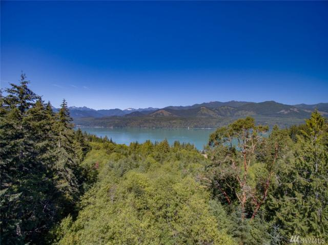 0 Old Holly Hill Rd NW, Seabeck, WA 98380 (#1004373) :: Homes on the Sound
