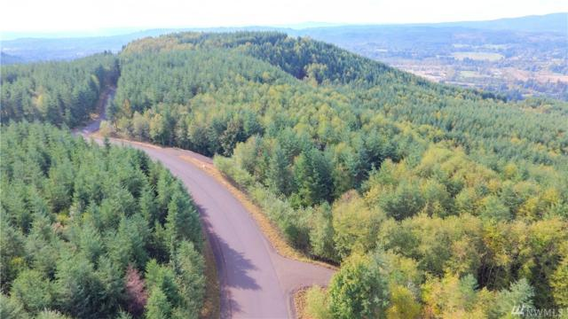 0-Lot M Thimbleberry, Castle Rock, WA 98611 (#1009025) :: Kimberly Gartland Group