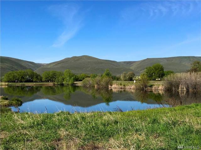2 Heron Farm Lane, Ellensburg, WA 98926 (#1020205) :: Ben Kinney Real Estate Team