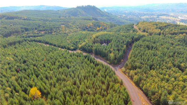0-Lot O Ridgewood, Castle Rock, WA 98611 (#1044682) :: Crutcher Dennis - My Puget Sound Homes