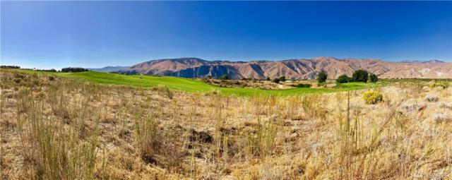 200 Desert Canyon Rd, Orondo, WA 98843 (#1060853) :: Ben Kinney Real Estate Team