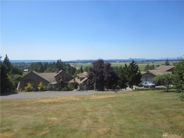 20968 Hermway Heights Dr, Mount Vernon, WA 98274 (#1072645) :: Ben Kinney Real Estate Team