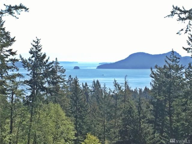 31-XX Roehl's Hill Rd, Orcas Island, WA 98279 (#1074152) :: Real Estate Solutions Group
