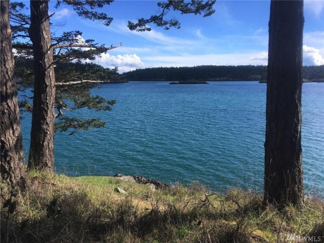 47-LOT Chinook Way, Center Island, WA 98221 (#1091298) :: Real Estate Solutions Group