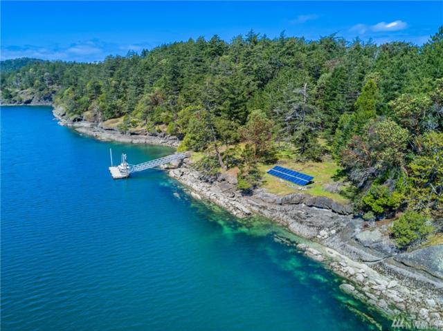 346 School Trail, Stuart Island, WA 98250 (#1100366) :: Keller Williams Realty