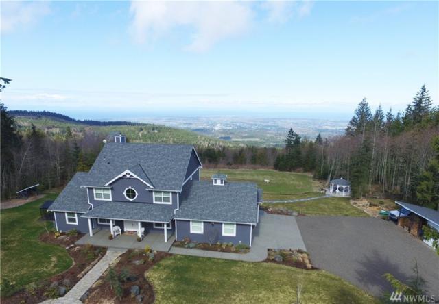 774 Lost Mountain Lane, Sequim, WA 98382 (#1101310) :: Ben Kinney Real Estate Team