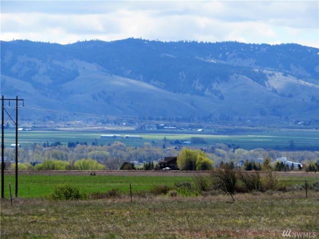 1 Saddlerock Estates, Ellensburg, WA 98926 (#1103298) :: Ben Kinney Real Estate Team