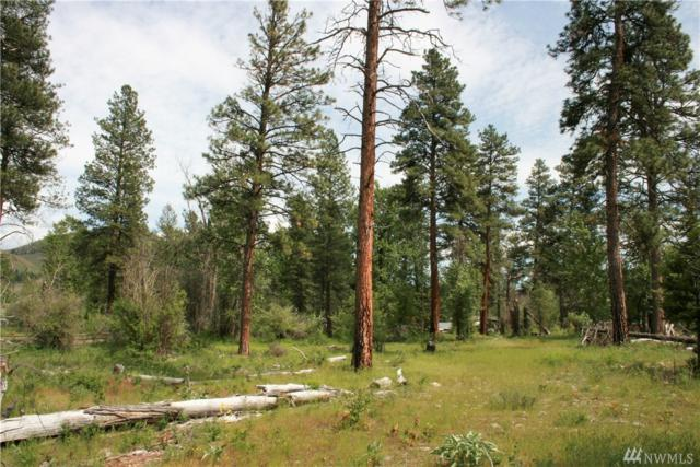0 Lot 3 David Coates Short Plat, Twisp, WA 98856 (#1116498) :: Ben Kinney Real Estate Team